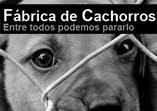 FABRICA de CACHORROS