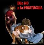 Dile NO a la Pirotecnia en FACEBOOK
