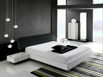 Contemporary black and white interior design bedroom.