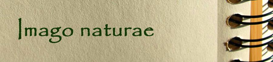 Imago naturae