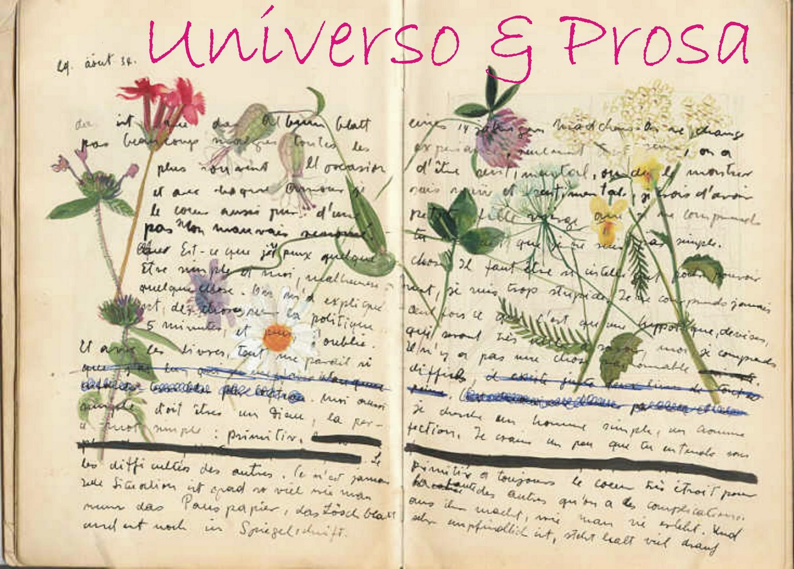 Universo & Prosa - Devaneios poéticos e desabafos crônicos de uma jovem jornalista carioca!