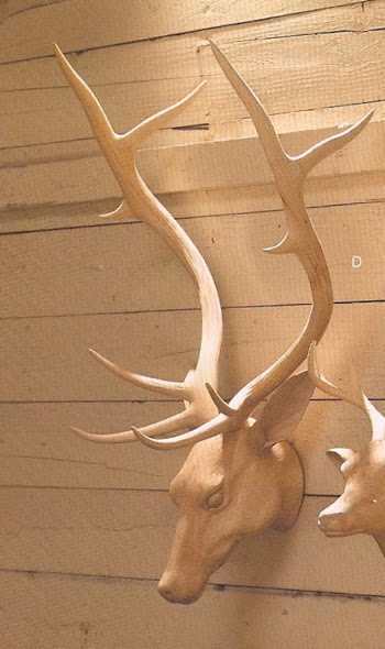 Carved wooden deer head iloveuma image