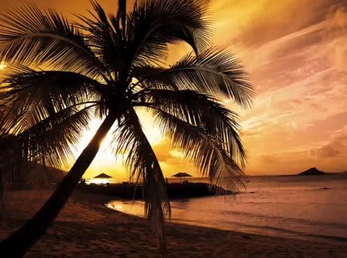 Alex Bartlett Ft. Anthya-Touch The Sun (Lyrics + Duende Vocal Remix)