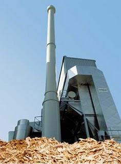 Si ricava energia dalla biomasse