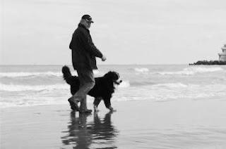 Uomo e cane San Bernardo a spasso sulla spiaggia