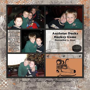 Anaheim Ducks hockey night