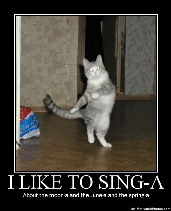 I Like to Singa