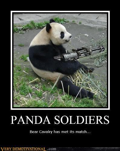 Panda Soldiers