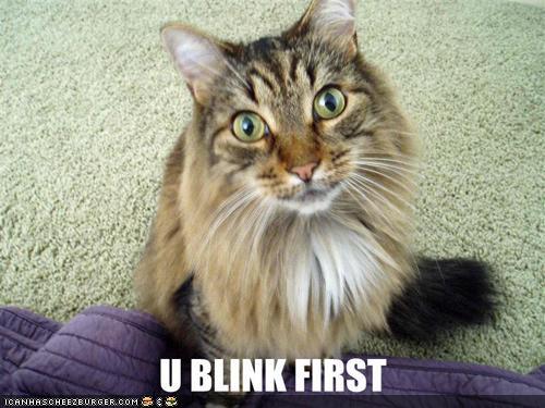 U BLIND FIRST