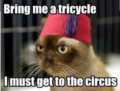 Bring me a tricycle I must get to the circus