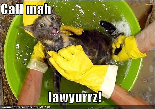 Call mah lawyurrz!