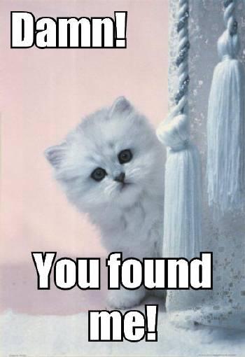 Damn! You found me!