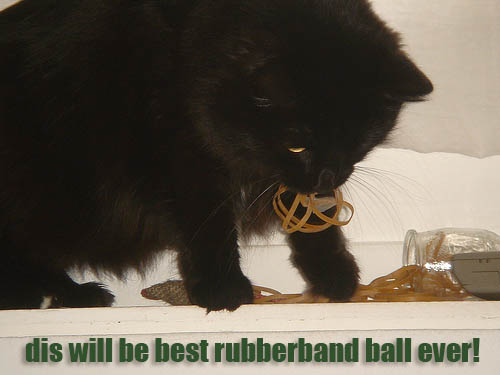 dis will be best rubberband ball ever!