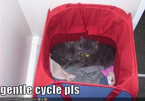 gentle cycle pls