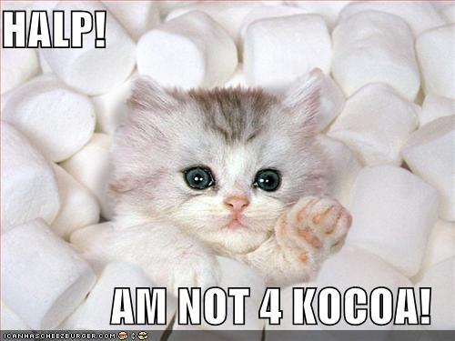 HALP! AM NOT 4 KOCOA!