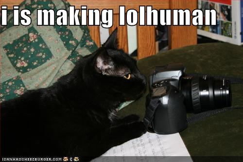 i is making lolhuman