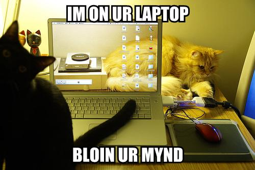 IM ON UR LAPTOP BLOIN UR MYND