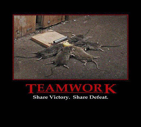 Share victory.  Share defeat.