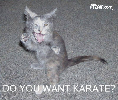 Do You Want Karate