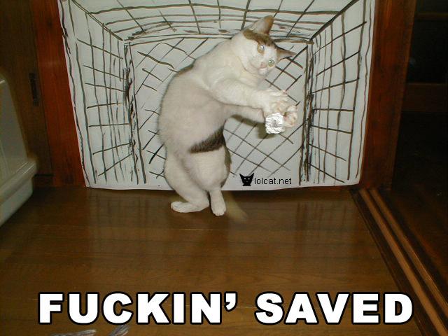Fuckin Saved
