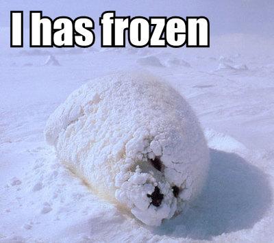 I Has frozen