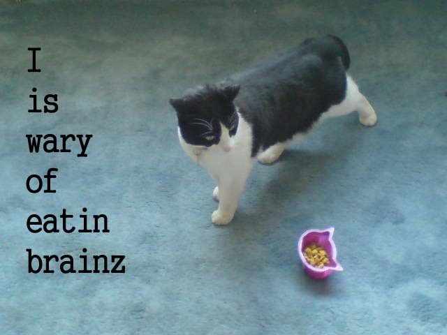 I is wary of eatin brainz