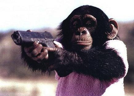 Monkey Holding a Glock