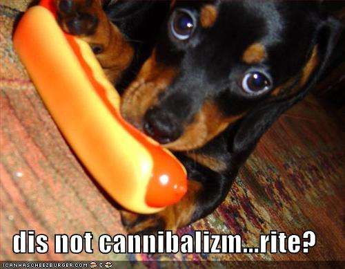 dis not cannibalizm rite
