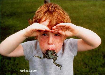 Kid Eating a Frog