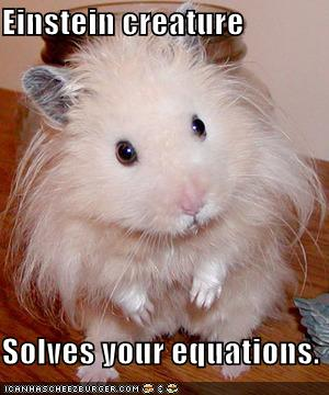 Einstein creature Solves your equations