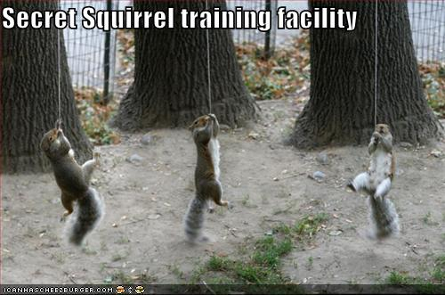 Secret Squirrel training facility