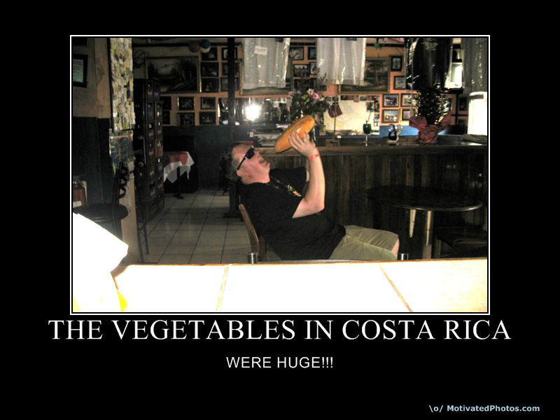 THE VEGETABLES IN COSTA RICA