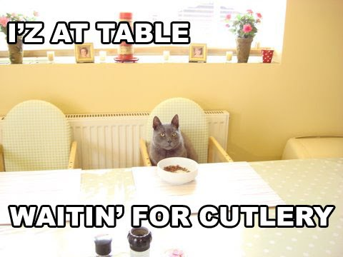 IZ AT TABLE WAITIN FOR CUTLERY