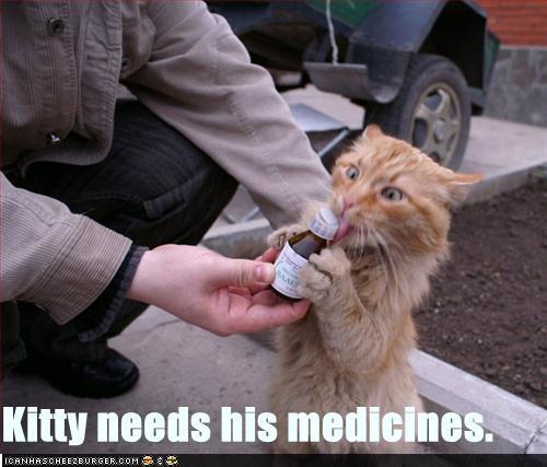 Kitty needs medicines