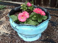 """Tiffany Blue"" pot"