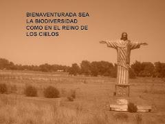 BIENAVENTURADA LA BIODIVERSIDAD DEL PLANETA ...
