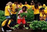 Michelle Obama Cultiva su propia comida orgánica