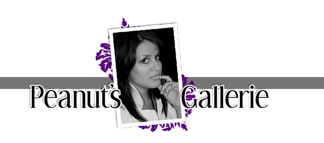 Peanut Gallerie Blog Design