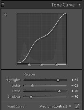 Photography Lightroom Tone Curve