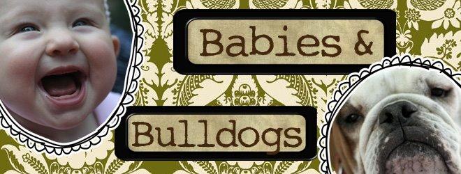 Babies & Bulldogs