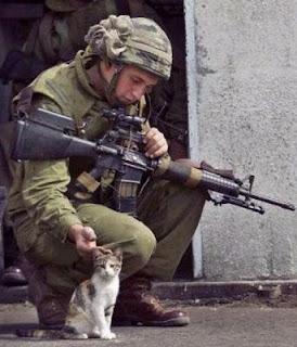 Soldado Ser Humano
