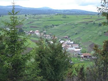 Subcetate- Case pe Pârâul Muscanilor