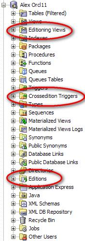 Oracle database 11g edition based