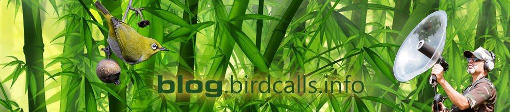 Birdcalls