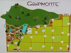 GranMonte Smart Vineyard