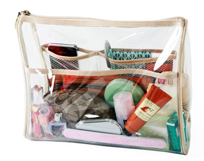 purse organizer, clear