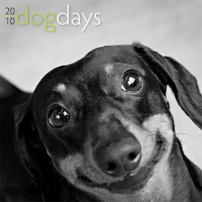 Dog Days 2010 calendar