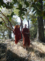 Retreats for Bhikkhunis, Buddhist Nuns and Sisters