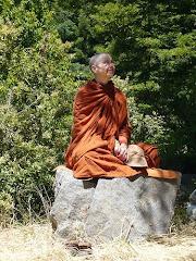Ven Sudhamma Bhikkhuni, Theri