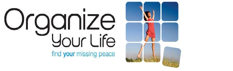 Organize Your Life - Personal Organization; Home Organizing; Life Goals;Organizer Planner